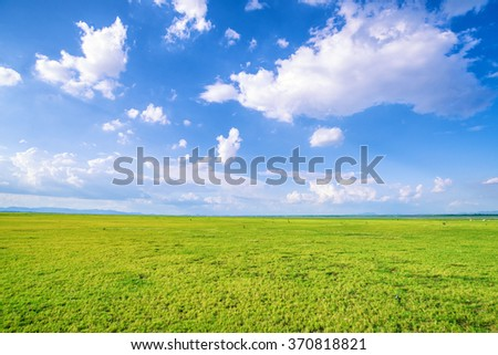 Blue sky and green grass field - stock photo