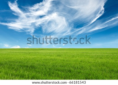 blue sky and green grass for successful advertisemen - stock photo