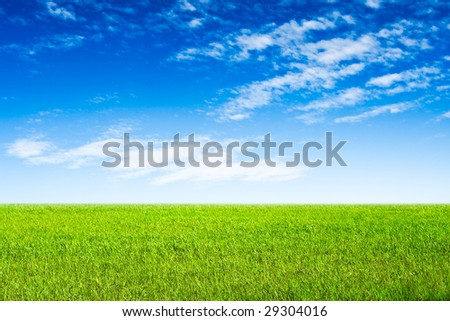 blue sky and green grass scene landscape