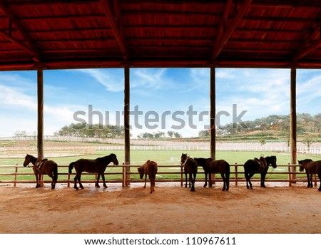 Blue sky and white clouds, stables and horses. - stock photo