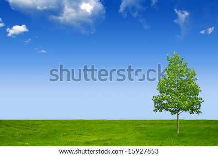 Blue sky, green grass and beautiful tree