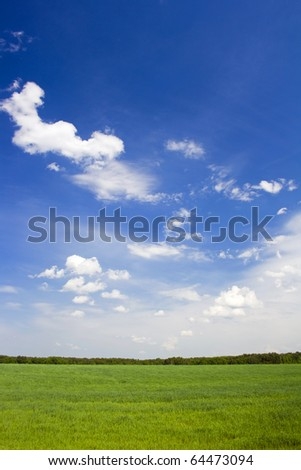 Blue sky over green meadow. Backgrounds - stock photo