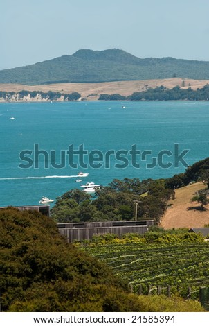 Blue sky summer shot of Auckland winery on Waiheke Island, with Rangitoto Island volcano in the distance - stock photo