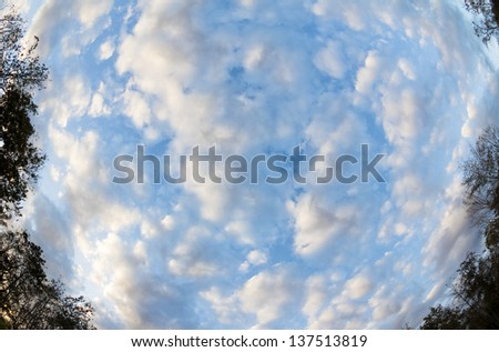 Blue Sky with Clouds and Trees Fish eyes effect - stock photo
