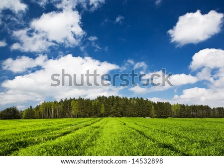 Blue sky with clouds, green grass and forest on low hill. - stock photo