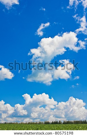 Blue sky with cumulus clouds over green field - stock photo