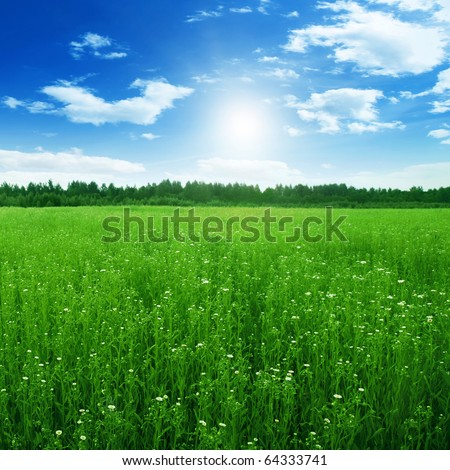 Blue sky with sun and green field. - stock photo