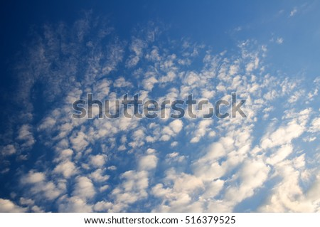 blue sky with white clouds on sunset.many little white clouds creating a tranquil weather pattern on a blue background.