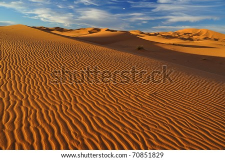 blue sky with white clouds over sand dunes in sahara desert - stock photo