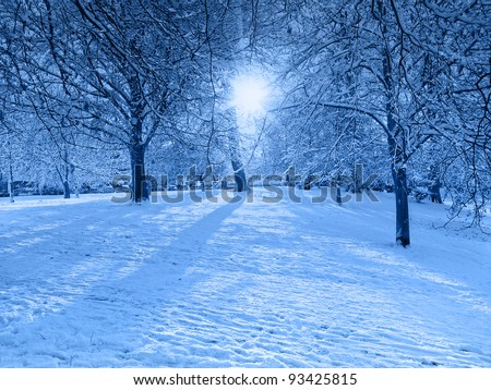 Blue Snow Scene with Light Shafts through Trees - stock photo