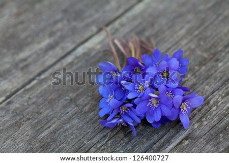 blue spring flowers on wooden table
