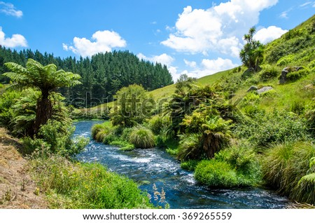 Blue Spring which is located at Te Waihou Walkway,Hamilton New Zealand. It internationally acclaimed supplies around 70% of New Zealand's bottled water because of the pure water. - stock photo