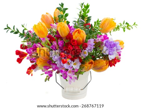 blue, violet  and red freesia  and orange tulip flowers  isolated on white background - stock photo