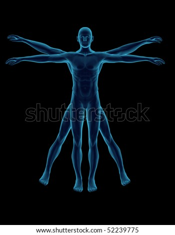 Blue Vitruvian man - stock photo