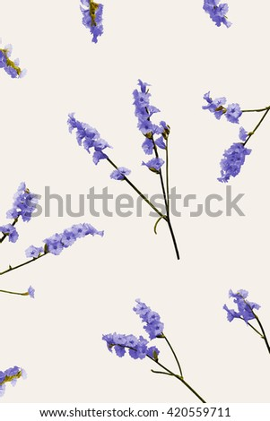 Blue wild flowers flat lay view. Filed summer flowers randomly placed and isolated on bright background. Lavender conceptual  image top view. Blue field flowers background. Tender lavender flowers. - stock photo