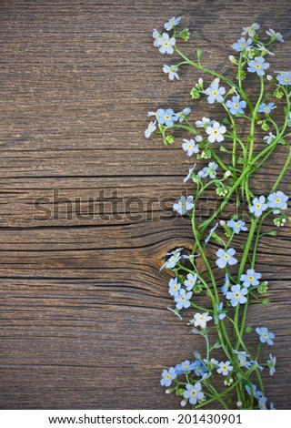 Blue wild flowers on an old wooden background - stock photo