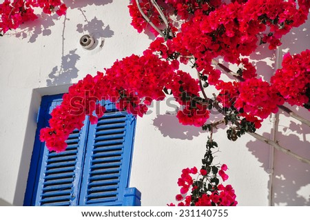 Blue Window and Red Flowers in a Greek Island - stock photo