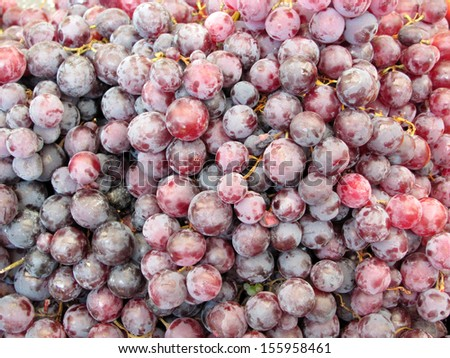 Blue wine grapes in a market - stock photo