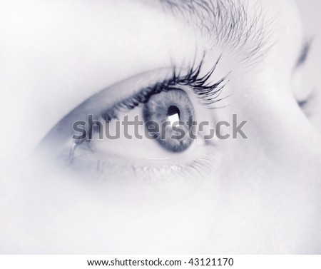 Blue woman's eye - stock photo