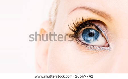 Blue woman's eye. Very sharp image