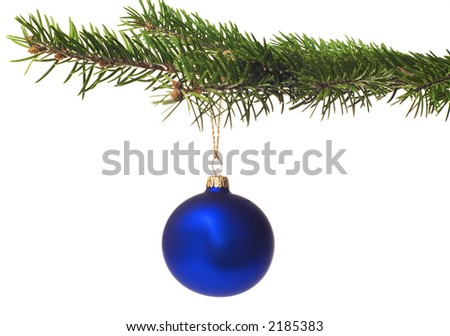Blue xmas ball hanging on pine twig isolated on white background