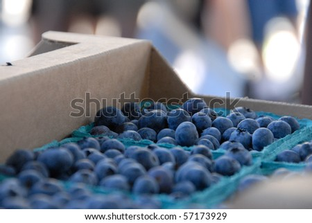 Blueberries at the Saturday Market in Boise, Idaho - stock photo