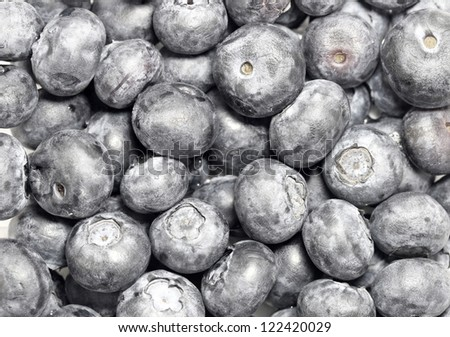 Blueberries close up - stock photo