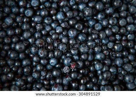 Blueberries close up as background