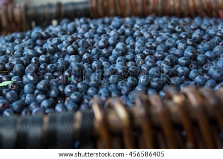 Blueberries in a basket.