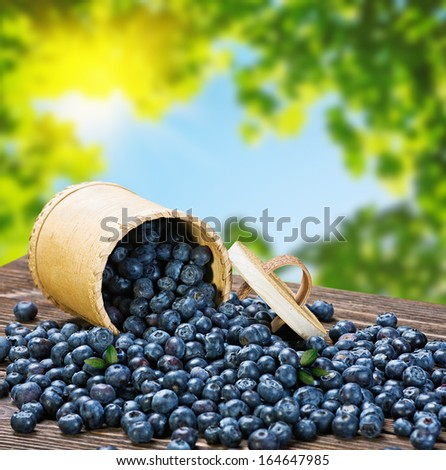 Blueberries in a basket is scattered on the wooden table