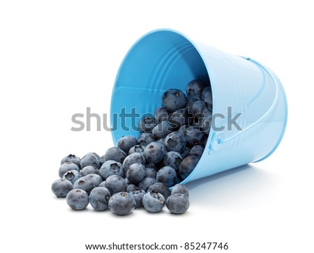 Blueberries in a bucket on a white background