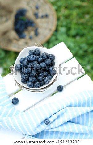 Blueberries in plates near napkin on wooden table on grass background