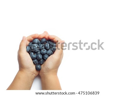 Blueberries in the children's hands isolated on white background. The concept of summer berry crops, organic food, vitamins