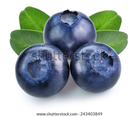 blueberries isolated  - stock photo