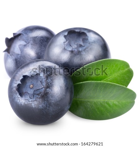 Blueberries isolated on white background. Clipping path  - stock photo