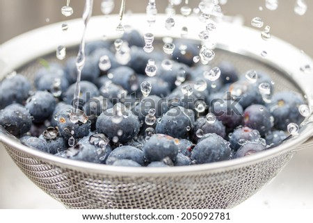 Blueberries rinsed with water - stock photo