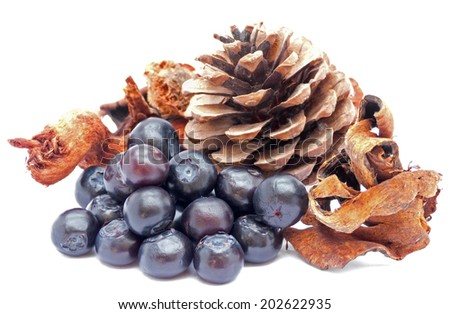 Blueberries with christmas decoration on white - stock photo