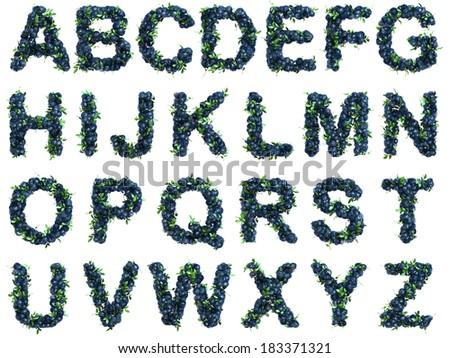 Blueberry alphabet on white background - stock photo