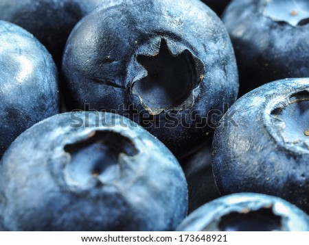 Blueberry blueberries background, close-up - stock photo