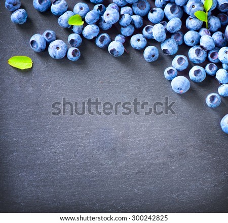 Blueberry border design. Blueberries background. Ripe and juicy fresh picked blueberries closeup. Copy space for your text.  - stock photo