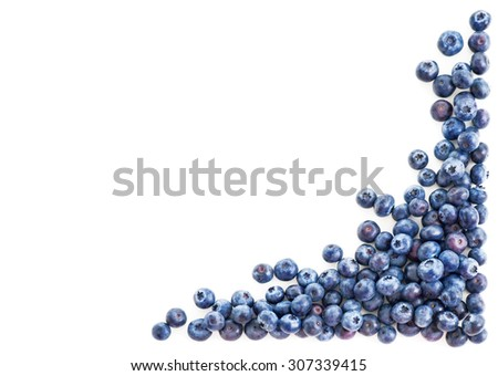 Blueberry frame corner isolated on white background - stock photo