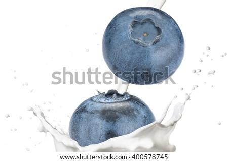 Blueberry Fruit Fall on Milk Splash - stock photo