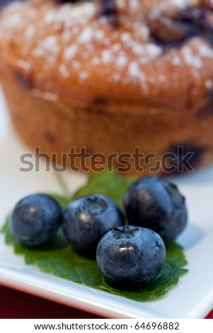 blueberry muffin on a square plate