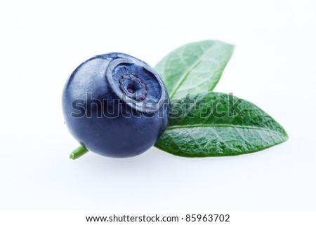 Blueberry with leaves isolated on white background - stock photo