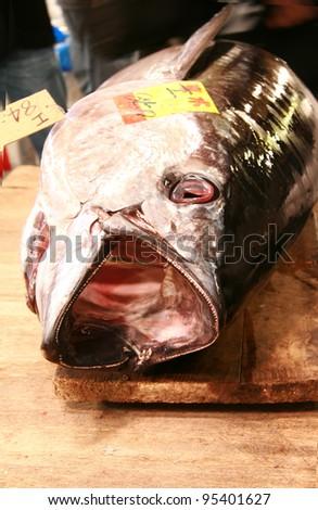 Bluefin tuna in Japan - stock photo
