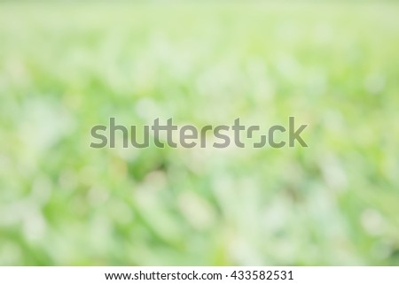 Blur abstract background of natural grass field. Blurry view of golf field. Defocus lawn field. - stock photo