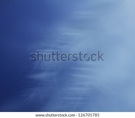 Blur Blue feather close up on the cyan background - stock photo