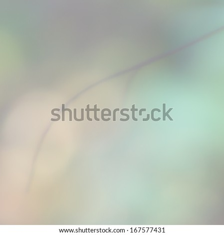 blur branch and beautiful abstract background of natural multicolor leaf - stock photo