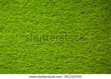 Blur grass on green  background - stock photo