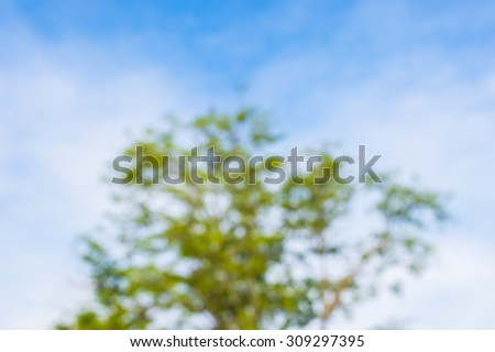 Blur green tree and blue sky background. - stock photo
